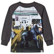 Molo Ruzel T-Shirt Record Store Color 98 cm (2-3 år)