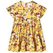 Molo Cinna Dress Sunrise Flowers 74 cm (6-9 mnd)