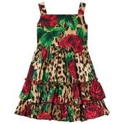 Dolce & Gabbana Leopard and Rose Print Dress 2 years